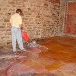 Staining Basics Chris Sullivan ,