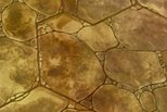 Natural Stones, Rock Garden Site Scofield Systems ,