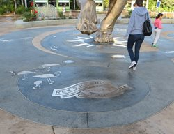 Exposed Aggregate, Brass Embeds Artistic Concrete Concepts In Concrete Const. Inc. San Diego, CA