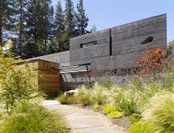 House, Walls, Cheng, Board Formed Concrete Homes Cheng Design Berkeley, CA