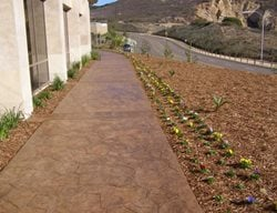 Sandstone, Brown Concrete Walkways Concepts In Concrete Const. Inc. San Diego, CA