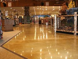 Get the Look - Polished Concrete Concrete Treatments Inc Albertville, MN