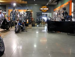 Gray Floors Concrete Floors Polishing & Sealing Ltd Ottawa, ON