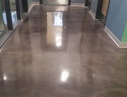 Office, Polished Polished Concrete Rose Restoration Fairfax, VA