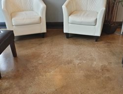 Brown Concrete Stained Concrete Concrete Ideas Tampa, FL