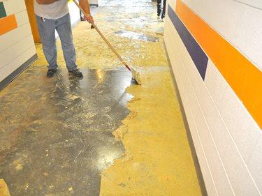 Scraping Away Mastic Concrete Walkways Franmar Chemicals, Inc. Bloomington, IL