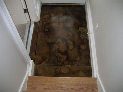 Sienna Concrete Floors Scheid Concrete Inc. Huron, OH