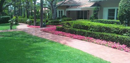 site coolstone concrete design encino ca - Sidewalk Design Ideas