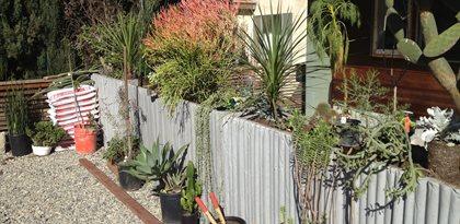 Img_1610 (1) Site Culloton Design Los Angeles, CA