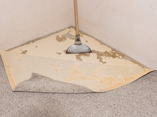 4 Proven Ways To Remove Glue From Concrete Network