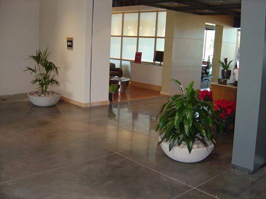 Office Space, Plants Concrete Floors LA Concrete Works West Hills, CA