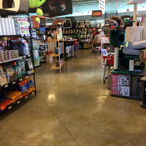 Pet Store, Stained Concrete Floor, Scored Concrete Concrete Floors Artisan Concrete Austin, TX