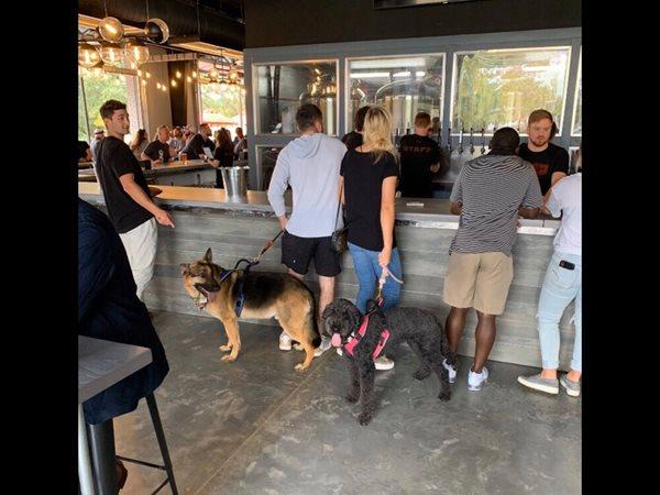 Restaurant, Dogs, Floors Concrete Floors COUNTERintelligence of Altanta Atlanta, GA