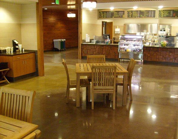 Cafeteria, Polished, Brown Polished Concrete Concrete Treatments Inc Albertville, MN