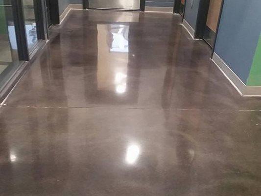 Office, Polished Polished Concrete Rose Restoration Fairfax, VA