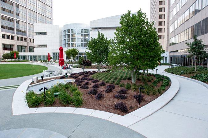 Coca Cola Headquarters, Scofield Award Site Ruppert Landscape Company Lilburn, GA