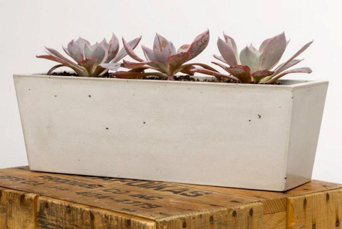 Concrete Runner Planter, Purple Succulents Site Opus Concrete Santa Ana, CA