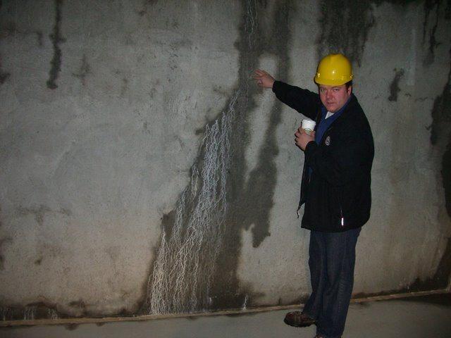 Crystalline Waterproofing Site Kryton International ,