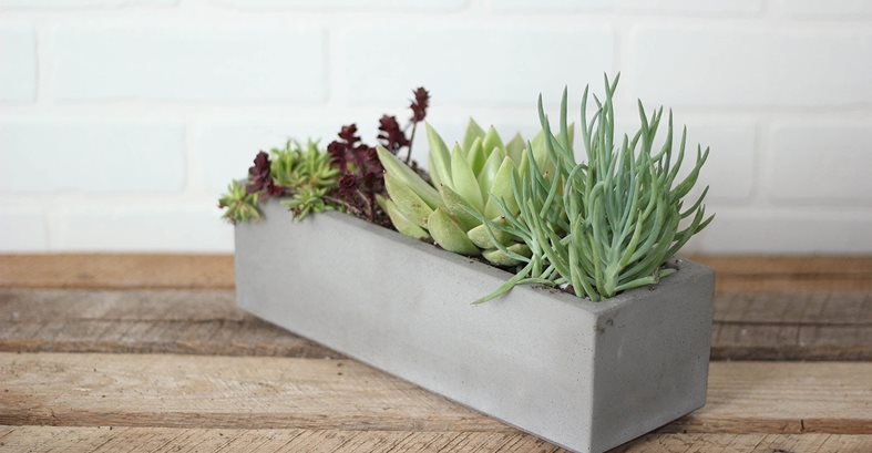 Concrete Planter, Succulents Site Concrete Wave Design Anaheim, CA