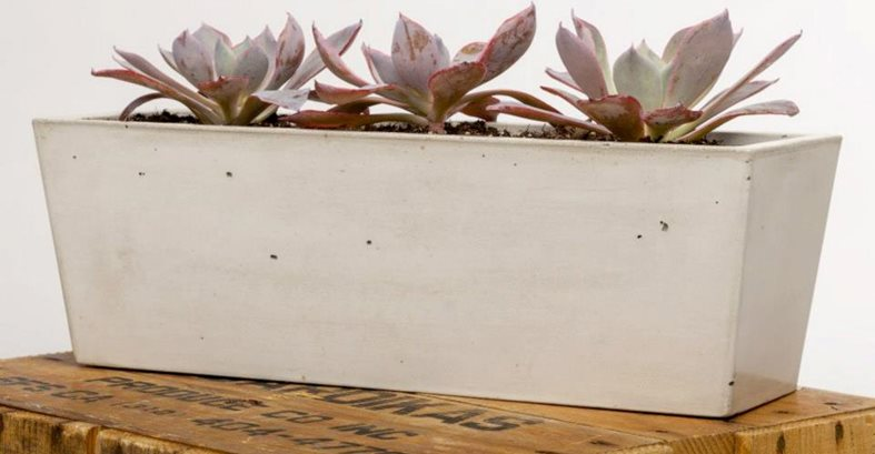 Concrete Runner Planter, Purple Succulents Site Opus Stone Tustin, CA