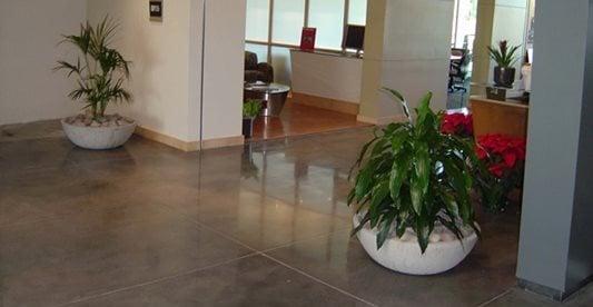 办公空间,植物混凝土地板LA Concrete Works West Hills, CA