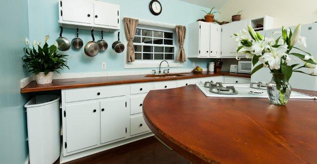 Round Island Counter Architectural Details Reformed Concrete LLC Quarryville, PA