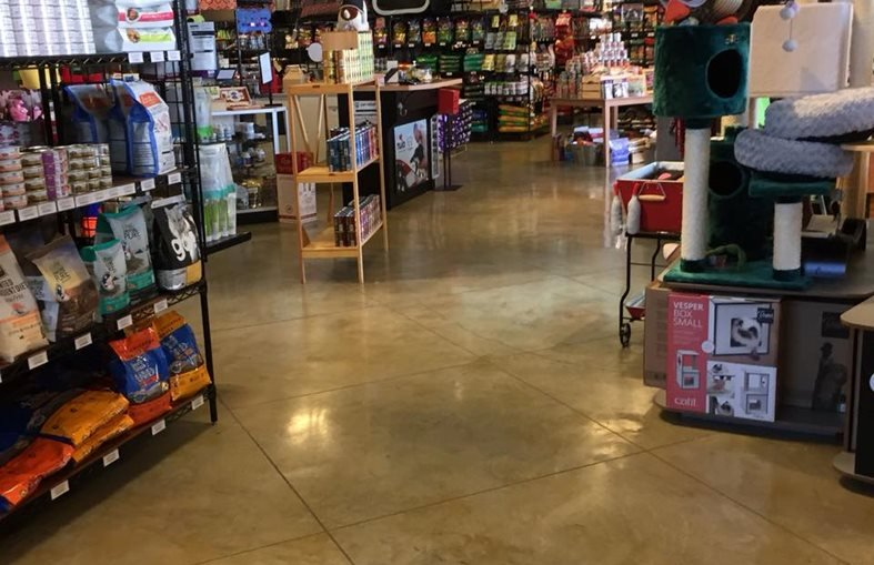 Pet Store, Stained Concrete Floor, Scored Concrete Stamped Concrete Artisan Concrete Austin, TX